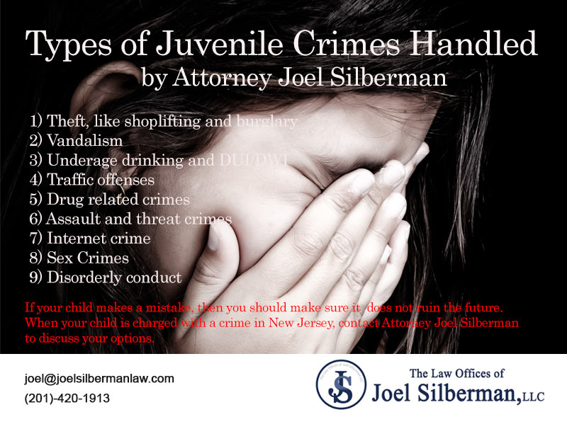 Juvenile Crimes Handled by Attorney Joel Silberman